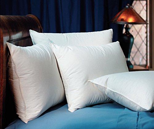Pacific Coast Touch Of Down Standard Pillow Set  2 Standard Pillows