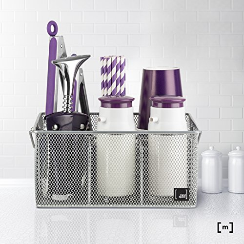 Review Silver Utensil Holder By