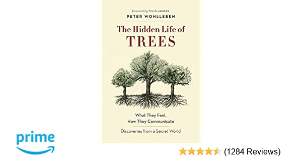 Amazoncom The Hidden Life Of Trees What They Feel How