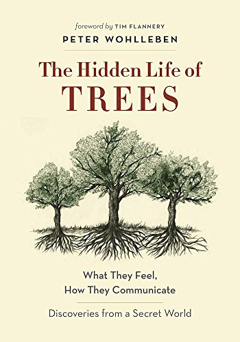 Forest Life - The Hidden Life of Trees: What They Feel, How They Communicate_Discoveries from A Secret World