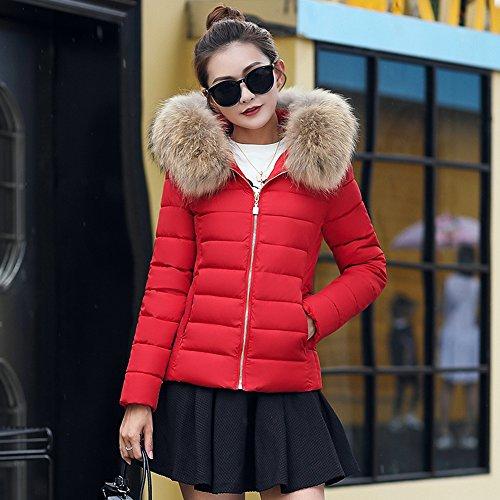 Court Élégante Pour Rembourrée L'hiver Avec Veste Femme Rouge Capuche Parka Étole 2017 Manteau Bainasiqi wAEInxqR6I