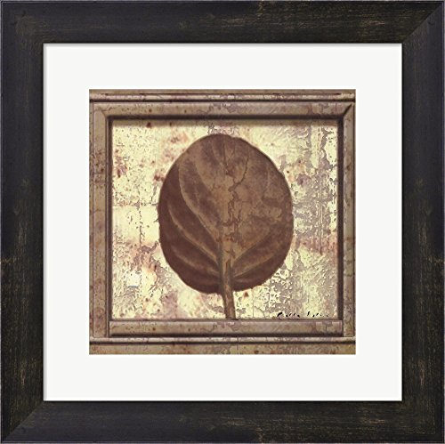 (Classic Leaf Square II by Pierre Fortin Framed Art Print Wall Picture, Espresso Brown Frame, 13 x 13 inches)