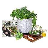 Grow Your Own Salads Full Garden Kit - AS SEEN ON SHARK TANK - Fast-growing Organic nonGMO Recipe Garden Kit
