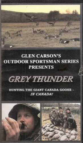 grey-thunder-hunting-the-giant-canada-goose-in-canada
