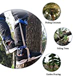 Trycooling Stainless Steel Climbing Tree Spikes