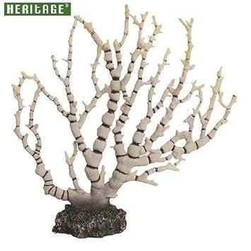 Heritage hcl050 Fancy del tanque de peces de acuario marino de arrecife de coral adorno pintado decoración 22 cm: Amazon.es: Productos para mascotas