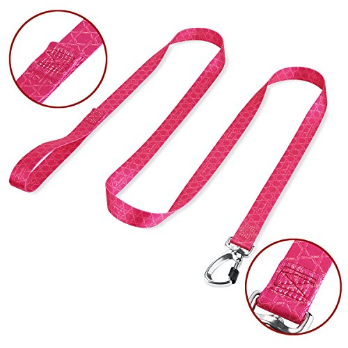 Dazzber Geometric Pattern Durable and Strong Dog Leash 6ft x 1 Rose Red, Heavy Duty Leashes for Medium to Large Dogs