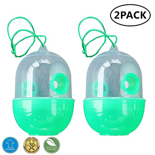 2 Pack Reusable Wasp Trap - Outdoor Wasp Killer Insect Catcher Honey Bee Trap- Effectively Lures for Yellow Jackets, Bees, Wasps, Hornets, Bugs and (Hornet Wasp Killer)