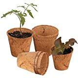 COIR GARDEN 5 Nos, Coco Basket for Gardening Plants and Flowers, Planters Pot, 5 inch