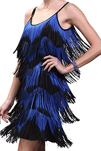 Cheap Flapper Dress (Vijiv Women's 1920s Flapper Fringe Tassel Charleston Party Cocktail)