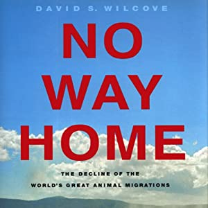 No Way Home Audiobook
