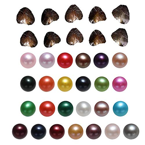 POSHOPS Freshwater Cultured Love Wish Pearl Oyster with Round Pearl Inside Wholesale Pearl Oysters Bulk 25PCS