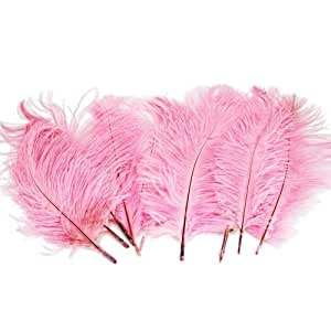 Z ZTDM 10pcs 9 -12 Inch Ostrich Feathers Optional-colors Wedding Decorations (pink) by MicroMall
