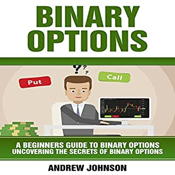 Binary options beginners guide