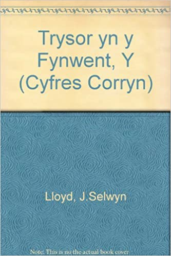 Trysor yn y Fynwent, Y (Cyfres Corryn)