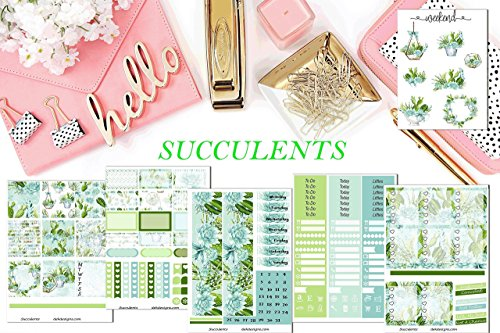 Succulents planner sticker kit. 6 sheets included on matte sticker paper. Choose size from Erin Condren Life Planner or Happy Planner Create 365. Kiss cut, just peel and stick.
