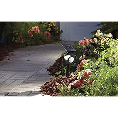 NOMA Solar Powered Spot Lights | High Output Waterproof Outdoor Decorative LED Lights with Adjustable Head for Patio, Garden, Walkway, Backyard or Parties | Warm White LED Lights, 2-Pack : Garden & Outdoor