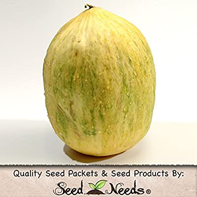 Package of 100 Seeds, Crenshaw Melon (Cucumis melo) Non-GMO Seeds by Seed Needs