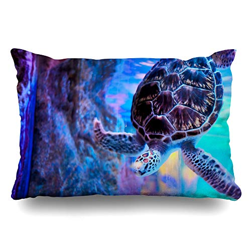 Quilted Turtle - 8