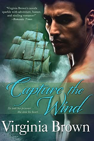 book cover of Capture the Wind