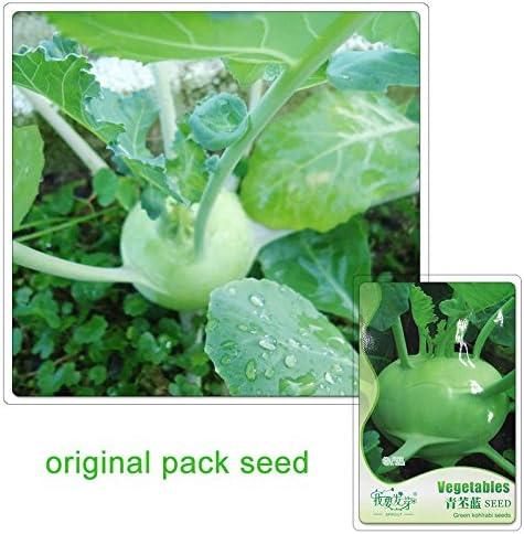 60 semillas / pack, semillas verdes Kohlrabi Semilla Líder de plantas de jardín de vegetales: Amazon.es: Jardín