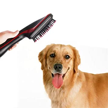 Amazon.com: GFYWZ Pet Dryer 2 in 1 Electric Hair Dryer Curler Comb Pet Dogs Cats Grooming Brush Comb and Drying Machine Dog Accessories for Pet Dog Animal: ...