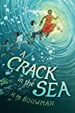 img - for A Crack in the Sea book / textbook / text book