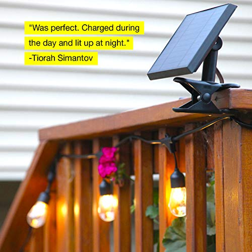 Brightech Ambience Pro -Waterproof Solar LED Outdoor String Lights - Hanging 1.5W Vintage Edison Bulbs 27 Ft Commercial Grade Patio Lights Create Bistro Ambience In Your Backyard, On Your Porch by Brightech (Image #3)