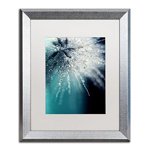 Trademark Fine Art Morning Sonata by Beata Czyzowska Young, White Matte, Silver Frame 16x20-Inch