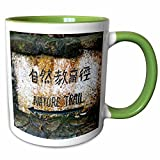 3dRose Danita Delimont - Signs - Hong Kong, Tai Po Kau Nature park trail marker. - 11oz Two-Tone Green Mug (mug_225589_7)