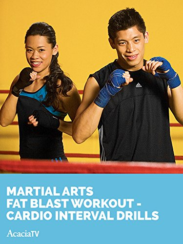 - Martial Arts Fat Blast Workout Cardio Interval Drills