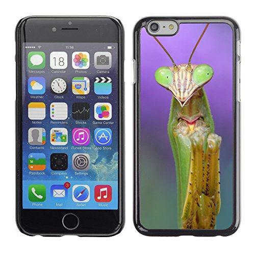 "Premio Sottile Slim Cassa Custodia Case Cover Shell // V00001710 mante religieuse // Apple iPhone 6 6S 6G PLUS 5.5"""