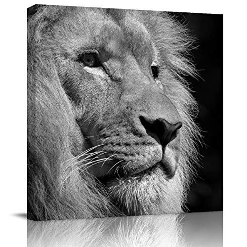 Canvas Wall Art - Black and White Lion's Side face Beard - Modern Wall Decor Gallery Canvas Wraps Giclee Print Stretched and Framed Ready to Hang 16