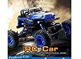 REMOTE CONTROL TRUCK, JEEP, 4 X 4, MONSTER TRUCK, 2.4 GHZ, 1:14 SCALE, RC TRUCK, ROCK CRAWLER