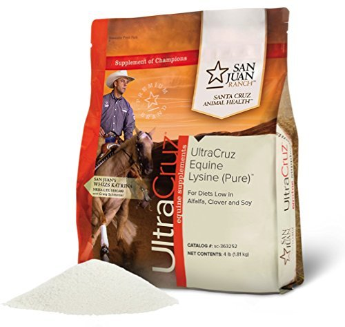 UltraCruz Equine Lysine (Pure) Supplement for Horses, 4 lb.Powder (360 Day Supply)