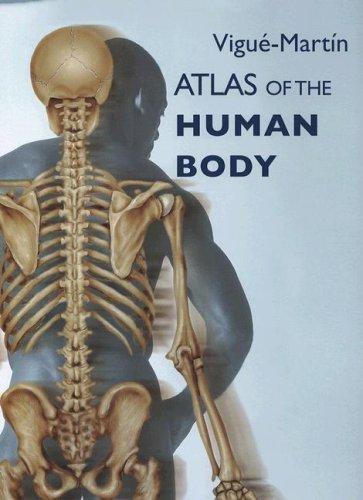 Download Atlas of the Human Body ebook