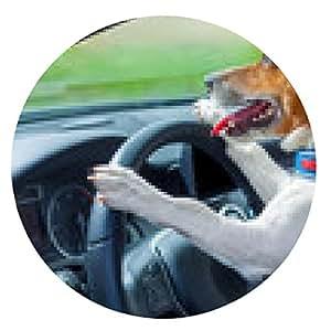 alfombrilla de ratón volante del coche del perro - ronda - 20cm