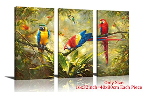 Animal Pictures Rainforest (HLJ ART Original Artwork 3 Panel Abstract Macaw Parrot in Tropical Rain Forest Animals Picture Canvas Print Wall Art Painting For Living Room Decor And Modern Home Decorations (Wood Framed))