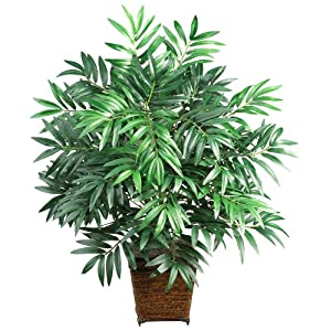 Nearly Natural 6556 Bamboo Palm with Wicker Basket Decorative Silk Plant, Green 24