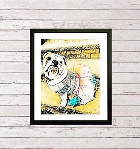 English bulldog framed art, English bulldog