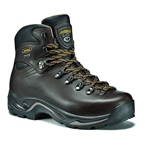 BROWN Men's Asolo Boot 520 GV TPS CHESTNUT pwYOxTw