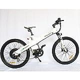 E-go Electric E Bike Hydraulic Brake 1000w 48v13ah White Pedal Assist Moped