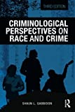 Criminological Perspectives on Race and Crime 3rd Edition