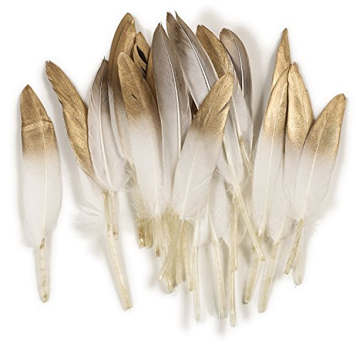 Ling's moment 25pcs Gold Dipped Off White Feathers for Boho Wedding Party Baby Shower Nursery Home (Nursery Painted Table)