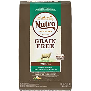 NUTRO Grain Free Adult Pasture-Fed Lamb, Lentils and Sweet Potato Recipe Dry Dog Food, (1) 24-lb. bag; Lamb #1 Ingredient; Easy to Digest Recipe; Rich in Nutrients and Full of Flavor