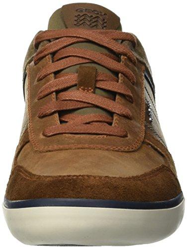 browncotto Bo U Chaussure Braun C6gf4 C Geox Herren te Marine xqw4TE0Sp