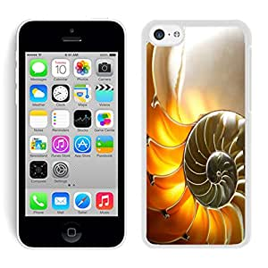 Designer Apple Iphone 5C Case Beautiful Conch Shell White Phone Cover Accessories