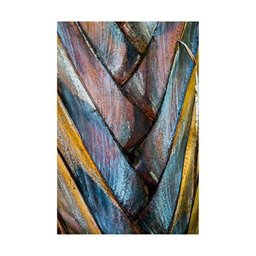 Trademark Fine Art Palm Puzzle by Jean Brya, ()