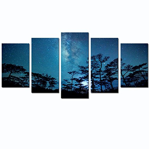 Live Art Decor- Beautiful Night Sky Wall Art Forest with Milky Way Canvas Print Framed Easy to Hang,Modern Home Decor Art (10