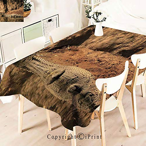 Modern Decor Tablecloth, Crocodile Swimming in The River Rock,Graphic Fusion Artwork, Dining Room Kitchen Rectangular Table Cover,W55 xL71,Brown Tan ()